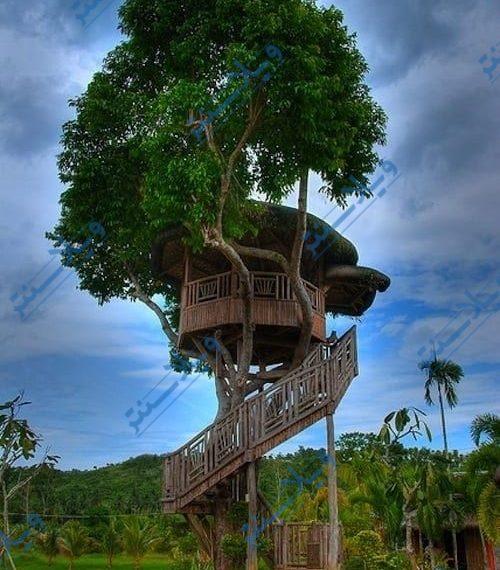 ویلا درختی
